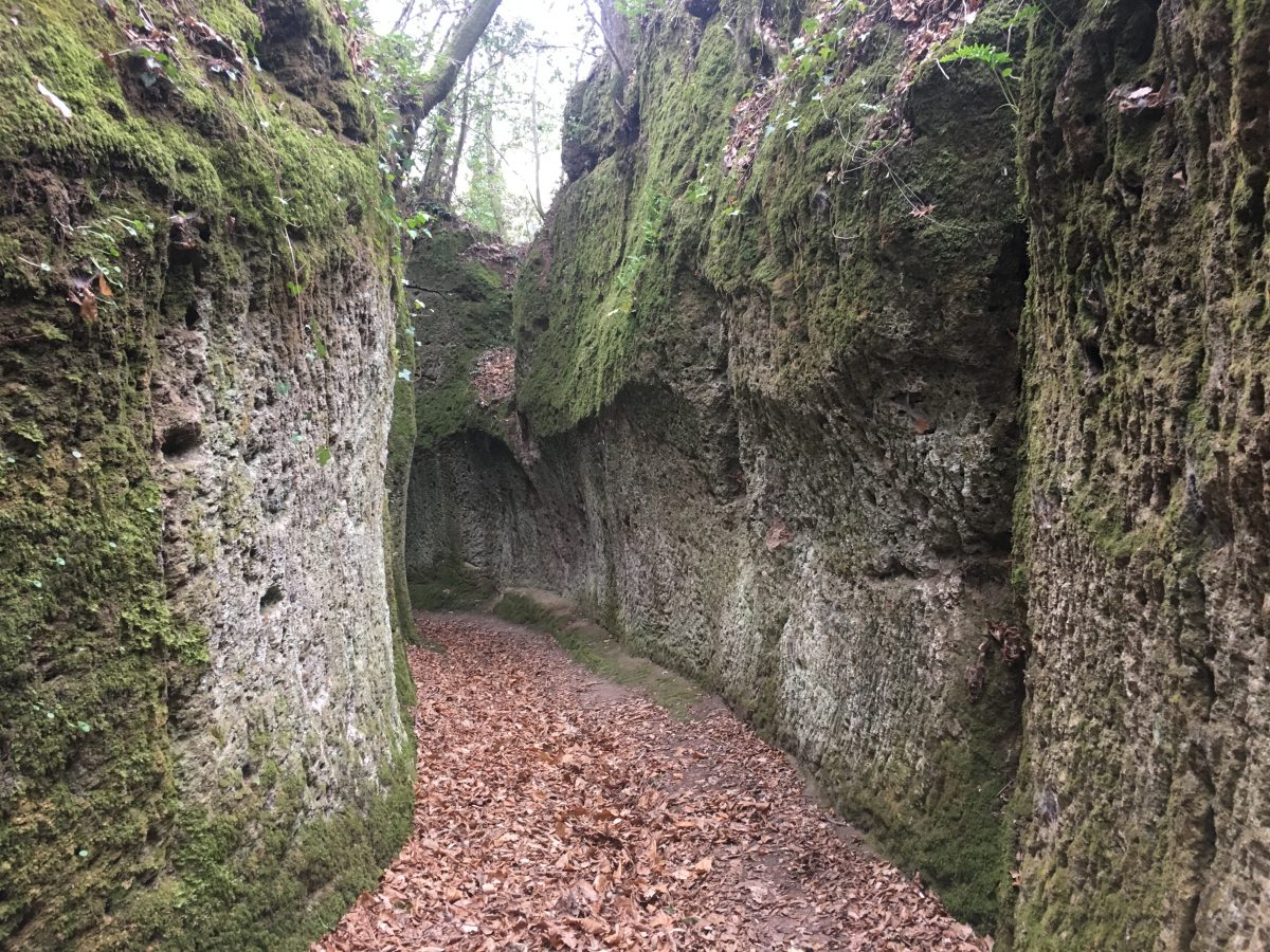The Hollow Ways of the Etruscans